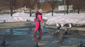 голубь : Little Girl Chasing Pigeons in a Park in Spring Стоковые видеозаписи