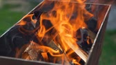 ohnivý : Burning Firewood in the Brazier. Summer Outdoor Cooking on a Family BBQ Grill. The Concept of Food on the Grill