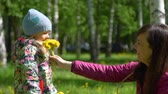 toplamak : Mother and Daughter Collecting Yellow Dandelions and Sniffing It. The Smell of Spring. Slow Motion. Harmony with Nature, Concept of Vacation, Summer Leisure, Ecology Stok Video