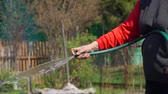 irrigação : Hands of Woman Hosing Down Beds in an Organic Vegetable Garden in Slow Motion. Growing Organic Vegetables and Fruits in the Garden at the Summer Farm. Concept of Growing Natural Clean and Organic Food