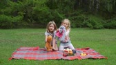 Тедди : Two Little Girls Playing with Toys while Sitting on the Red Plaid in Summer Park. Friendship, Childhood and People Concept Стоковые видеозаписи