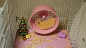 chomik : Cute Syrian Hamster Running on Wheel in the Cage. Toy Christmas Tree and Decorations are Around It. Working Hard on Holidays