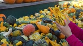販売のための : Close Up of Woman with her Daughter Buying Fresh Vegetables. Various Colorful Decorative Gourds at Farmers Market. Slow Motion. Natural Organic and Vegan Food Shopping Concept