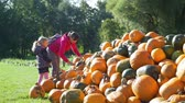 販売のための : Little Girl with her Mother Buying Halloween Pumpkin at the Farmers Market in Sunny Autumn Day. Slow Motion. Halloween Harvesting and Thanksgiving Concept 動画素材