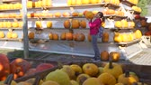 販売のための : Young Woman Choosing Halloween Pumpkin at the Local Farmers Market. Large Pyramid and Wooden Shelves Full of Pumpkins. Halloween Harvesting and Thanksgiving Concept