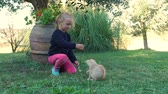 sarılma : Five-year Little Girl Playing with Cute Ginger Kitten on the Backyard. Slow Motion. Pets and Animals Concept