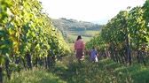 Back View of Woman with her Little Daughter Walking through the Rows of Tuscan Vineyards. Italian Province and Hills. Slow Motion. Vacation, Holidays and World Travel Concept