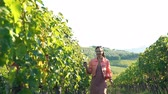Young Woman Walking at Vineyards on a Sunny Evening and Holding a Glass of Red Wine. She is Happy of Having Great Grape Harvest. Family Winery. Sommelier. Slow Motion. Stock mozgókép