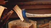 pirzola : A slow-motion video of an axe splitting a piece of wood on a stump.