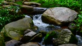 vektor : Time lapse video of water flowing in Doi Suthep Pui national park, Thailand.