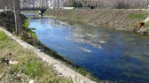 stream and sewage wastes flowing through the city,