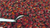 make rosehip jam and marmalade, Wash the rosehip fruits in water and mix with spoon,