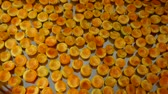aprikosen : fresh apricots, left to dry in trays on the home balcony. Videos