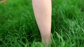 brilhantemente : Female legs walk barefoot through lush green grass.  Close up view