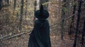 vampiro : Unrecognizable woman as black witch walks between trees in autumn forest.Girl in long dress, cape, fairy hat. Halloween concept, cosplay dressing up Filmati Stock