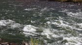 beauty in nature : Flowing water - Colorado River