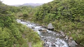 tongariro : Whakapapanui Stream, New Zealand Stock Footage