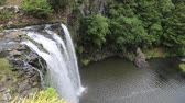 romance : Whangarei Falls from above, New Zealand