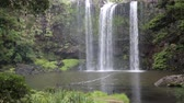romance : View at Whangarei Falls, New Zealand Wideo