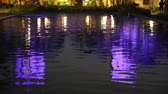 renk : Reflection in lily pond, San Diego