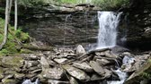 appalachian : View at Middle Falls of Hills creek, West virginia Stock Footage