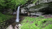 appalachian : Landscape with Lower Falls, West Virginia