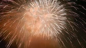 celebration : firework display Stock Footage