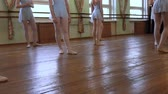 frayed : Girls are getting ready to dance during ballet class in ballet classroom. Stock Footage