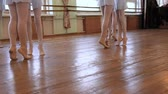 tutu skirt : Young ballerinas do pirouettes in pairs during ballet lesson.