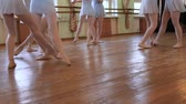 sukénka : Young ballerinas do pirouettes in pairs during ballet lesson.