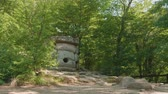 экскурсия : Front view of ancient dolmen among green trees Стоковые видеозаписи