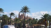 baleár : View of Palma Cathedral in Palma de Mallorca