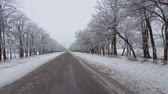 Driving on a snow covered lonely rural road. Steadicam shot. Dostupné videozáznamy