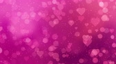 фуксия : Fuchsia hearts appear on the shining soft background. Valentines Day holiday abstract loop animation. Стоковые видеозаписи