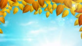 Sunny season Autumn background with Natural branch with orange leaves on the blue sky with sunlights. Stock Footage