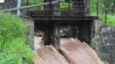real jam : high water at an old weir