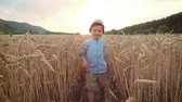 pasture : Little boy on the wheat field - slow motion Stock Footage
