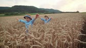 prole : Little boys on the wheat field - slow motion Vídeos