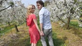 garden : Cheerful couple enjoying a relaxing time in the orchard Stock Footage