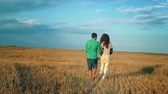 Young Man and woman holding hands and walking through a wheat field, sunset, slow motion
