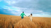 milharal : Young Man and woman holding hands and walking through a wheat field, sunset, slow motion