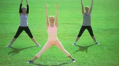 aeróbica : Three slim athletic women doing exercises on green grass