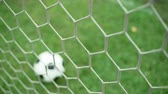 goleiro : View of soccer ball through goal net on green grass field Vídeos