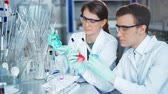tinted : Young scientists working in modern biological lab Stock Footage