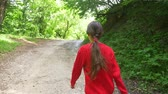 scythe : Little girl walking through the forest with a picnic box, back view, steadicam shot Stock Footage