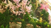 horta : a large artificial waterfall framed by pink flowers and green leaves. Stock Footage