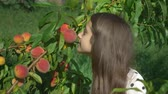 abricot : Happy brunette girl sniffing a fresh peach on a peach tree in the garden Vidéos Libres De Droits