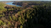 Aerial Drone footage. Forest, swamp and long lake