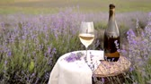 Glass of wine on the canvas cloth. Bottle of red wine against lavender landscape in sunset rays. Sunset over a violet lavender field in Provence, France. Stock Footage