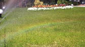 Irrigating grass with water sprinkler. Close-up of garden irrigation and sprinkler lawn.